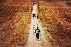 pilgrimage season